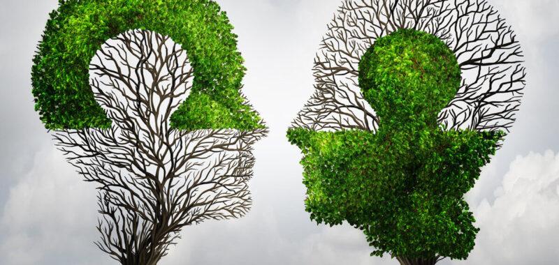 Mieux comprendre les différences entre un ERP et un CRM !
