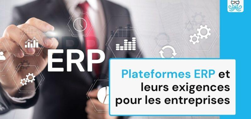 Plateformes ERP et leurs exigences pour les entreprises